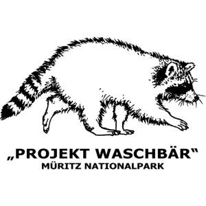 waschbaer tasse