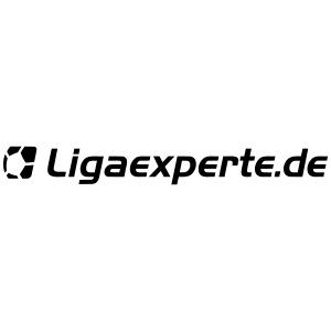 ligaexperte logo schriftzug fertig