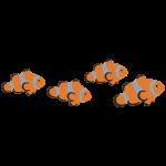Clownfisch Schwarm