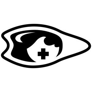 palme oeil lunette
