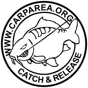 carparea logo schwarz 225x225mm v2
