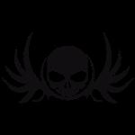 skull_wings