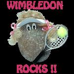 Tennis Rocks!
