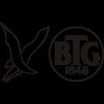 logo_btg_hawk