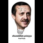 ampul_tayyip2