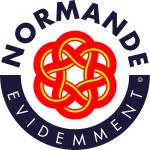 logo_nde_ev_08