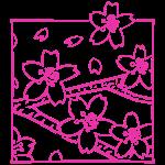 Fleur de cerisier d'Alishan