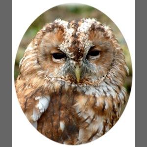 Tawney Owl Head