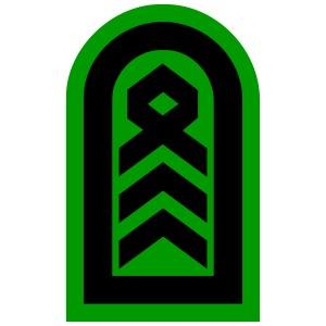 Schulterklappe Oberstabsfeldwebel