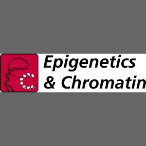 epigenetics and chromatin400
