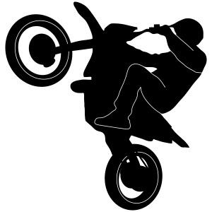 Supermoto wheelie