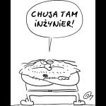 chuja_tam_inzynier