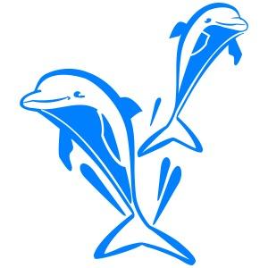 delfinpower