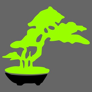 bonsai_baum_2