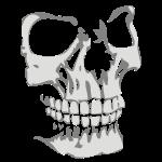 Skullface 3D right