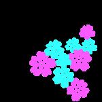 Kirschblüten Doggenkopf