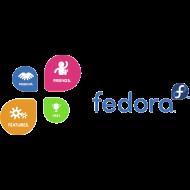 Motif ~ fedora_4f
