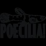Poecilia