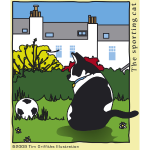 The sporting cat