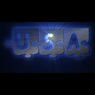 Motif ~ USA puzzle