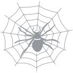 spin_web