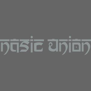 logo grey plotter