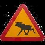 Warnschild Elch