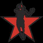dansbasket_logo_new