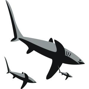 Drei Haie