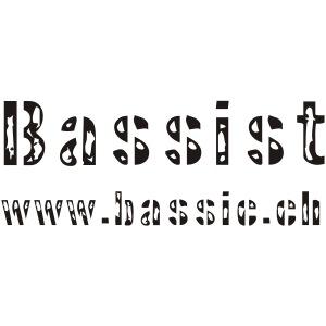 bassist hinten v8