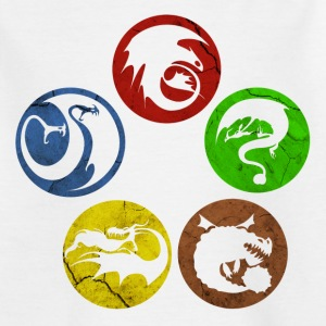 DreamWorks Dragons Icons Teenager T-Shirt - Teenage T-shirt