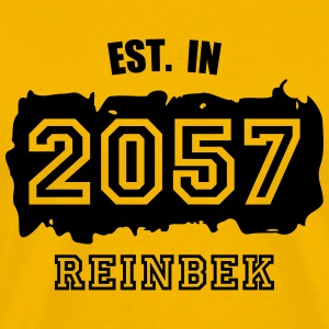 Established 2057 Reinbek T-Shirts - Männer Premium T-Shirt