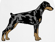 Dobermann shop online