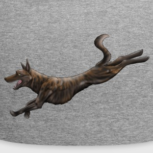 Dutch shepherd - Jersey-beanie