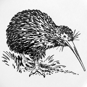 kiwi - Badge petit 25 mm