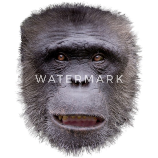 Monkey Face Costume Funny Animal Monkey Gift Apron Spreadshirt,Bathroom Remodel Bathroom Floor Tile Ideas