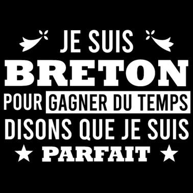 Carte Bretagne Drapeau Breizh Sac En Tissu Spreadshirt