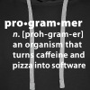 Programmer dictionary definition - Men's Premium Hoodie