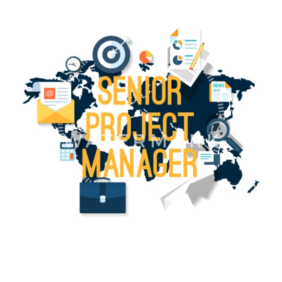 Image result for senior project manager
