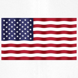USA Flag - Flexfit lippis