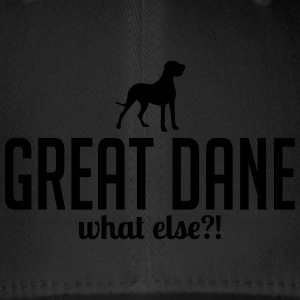 GREAT DANE whatelse - Czapka z daszkiem flexfit