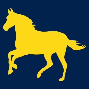 Paseos a caballo pony caballos de carreras - potro - caballo pequeño - Gorra  de béisbol 5317de22014