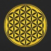 Flower of life - gold - sacred geometry - power of balancing and energizing, energy symbol - Women's Organic T-shirt
