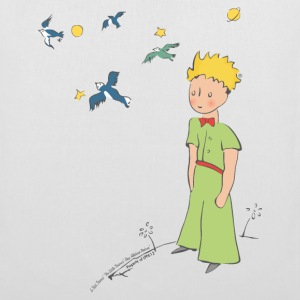 The Little Prince Travels With Birds