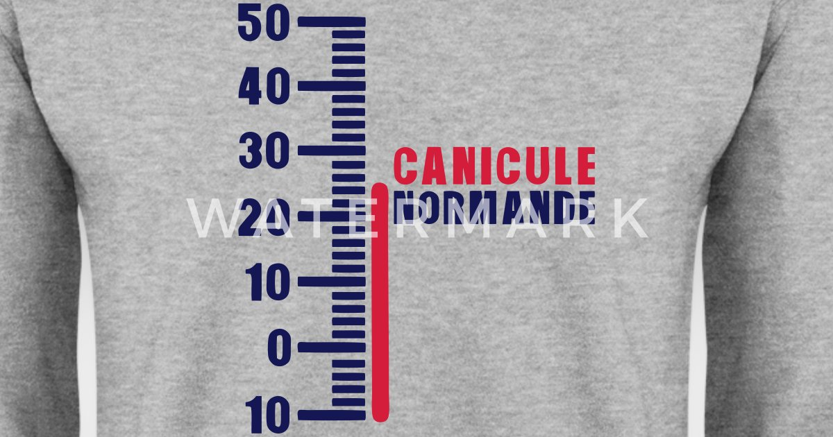 thermometr​e-canicule​-normande-​humour-swe​at-shirt-h​omme
