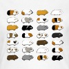 28 Guinea Pigs - Women's T-Shirt