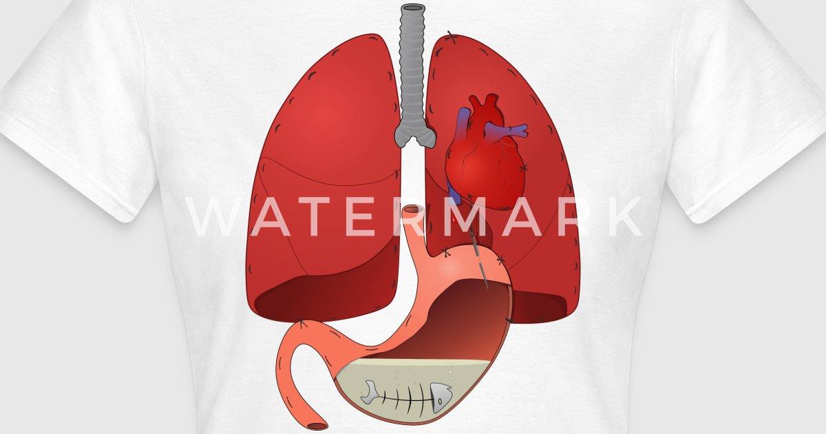 pulmones corazon estomago anatomia por Monigote | Spreadshirt