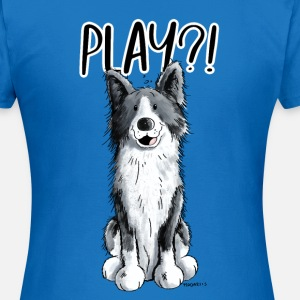 Border Collie Play