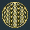 Flower of Life - FEEL THE ENERGY, Gold, Sacred Geometry, Protection Symbol, Harmony, Balance - Women's T-Shirt