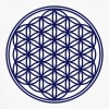 Flower of Life - Vector -  01, c, sacred geometry, energy, symbol, powerful, healing, protection, cl - Men's Organic T-shirt